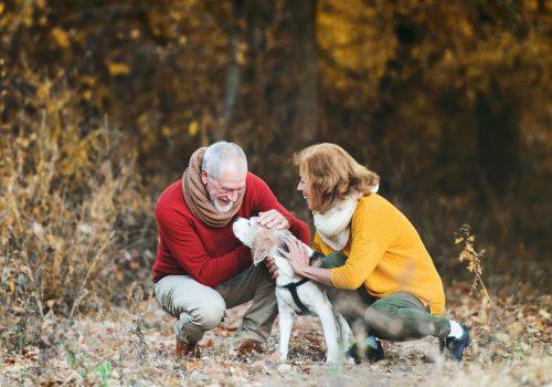 The Woodlands Retirement Planning